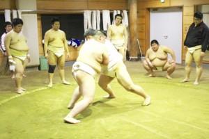 朝日大学相撲部